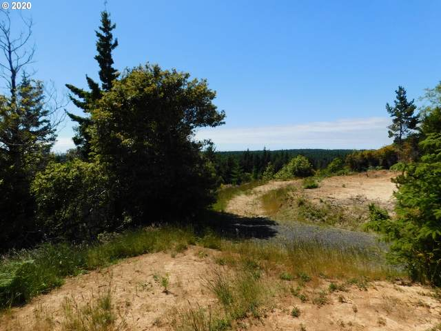 1975 Dee Tr, Port Orford, OR 97465 (MLS #20670808) :: Real Tour Property Group