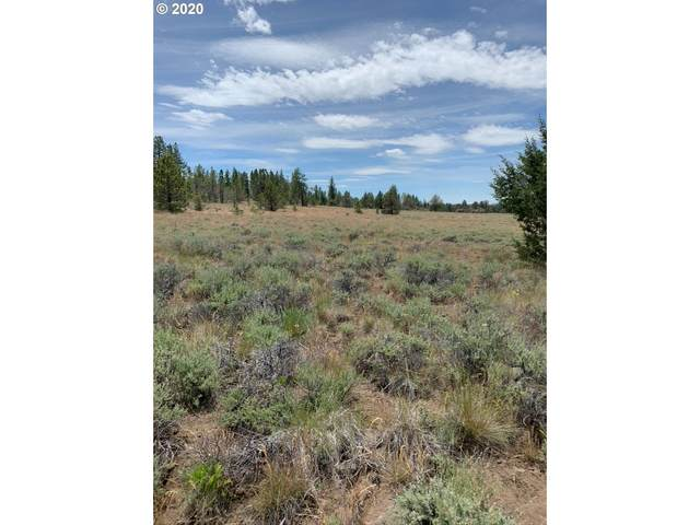 Sycan Marsh Lot 2, Paisley, OR 97636 (MLS #20671604) :: Premiere Property Group LLC