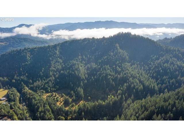 0 Salmon Creek Rd, Powers, OR 97466 (MLS #20671806) :: Change Realty