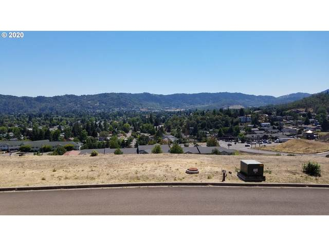 1972 NW Warewood Terrace Ct Lot14, Roseburg, OR 97471 (MLS #20676123) :: The Pacific Group