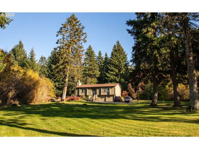 5955 Miller Rd, Mt Hood Prkdl, OR 97041 (MLS #20683333) :: Premiere Property Group LLC