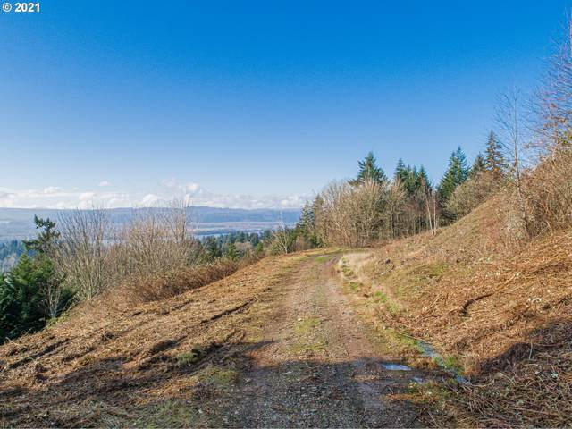 175 Mountain Reign Rd, Kalama, WA 98625 (MLS #20687870) :: Next Home Realty Connection