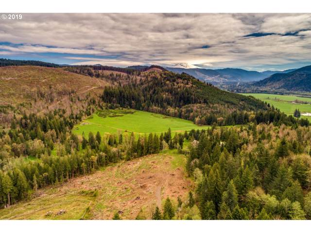 53321 E Marmot Rd, Sandy, OR 97055 (MLS #20690018) :: Matin Real Estate Group