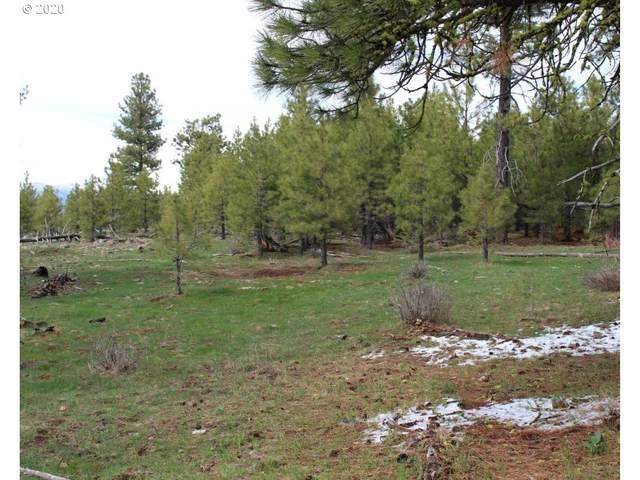 Quartz Mtn Pass 157., Lakeview, OR 97630 (MLS #20691011) :: Holdhusen Real Estate Group