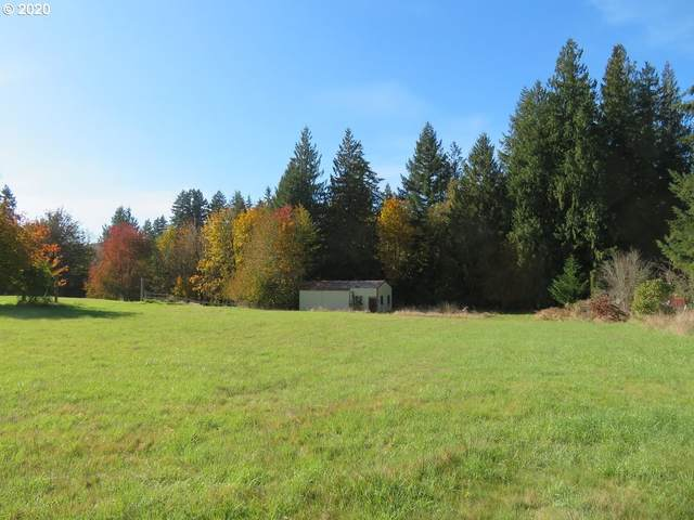 Chehalis Ave, Pe Ell, WA 98572 (MLS #20694283) :: Holdhusen Real Estate Group