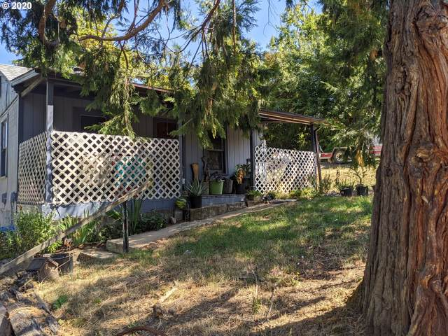 949 Union Gap Loop Rd, Oakland, OR 97462 (MLS #20699734) :: Townsend Jarvis Group Real Estate