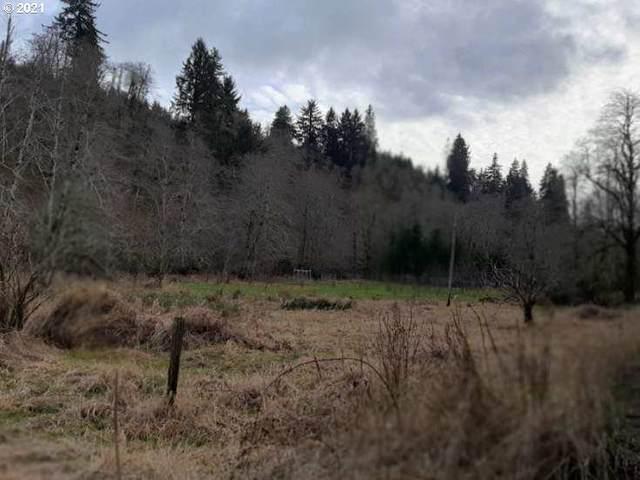 Highway 22, Hebo, OR 97122 (MLS #21000537) :: Fox Real Estate Group