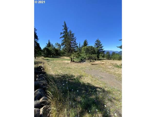 705 NW Loop Rd, White Salmon, WA 98672 (MLS #21004174) :: Premiere Property Group LLC