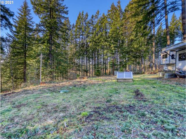 21899 S Lost Mountain Rd, Estacada, OR 97023 (MLS #21019486) :: Duncan Real Estate Group