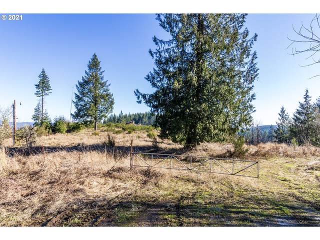 52324 NW Hayward Rd, Manning, OR 97125 (MLS #21021596) :: Beach Loop Realty