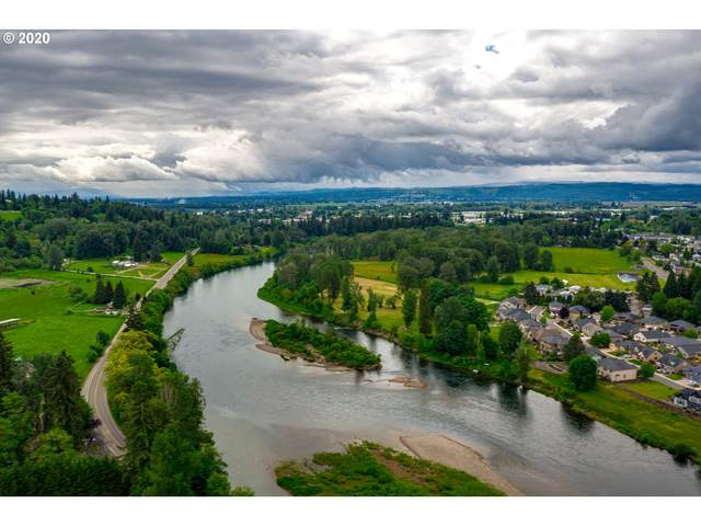 4620 NW 411TH Cir, Woodland, WA 98674 (MLS #21027348) :: Next Home Realty Connection