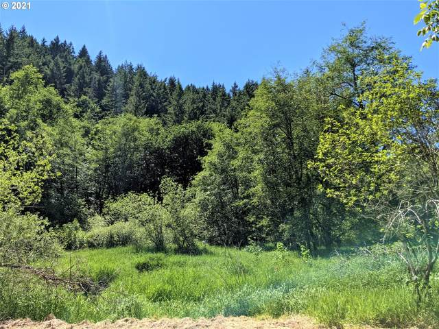 SW Pumpkinseed Rd, Willamina, OR 97396 (MLS #21028591) :: Fox Real Estate Group