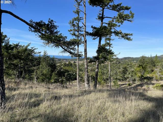 Indian Hills Loop, Gold Beach, OR 97444 (MLS #21028974) :: Lux Properties