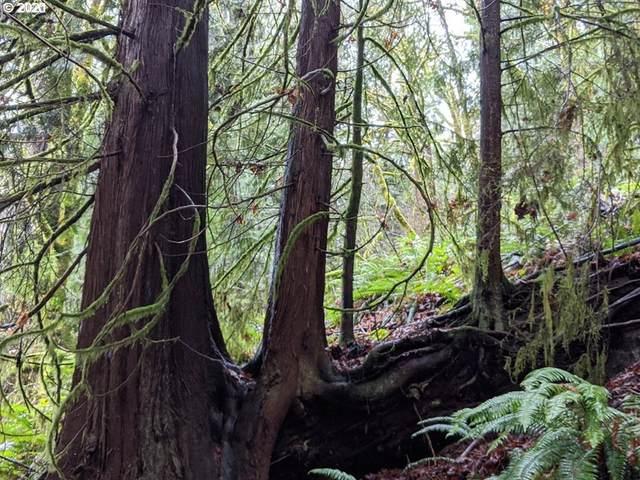 21208 E Mountain Creek Cir, Rhododendron, OR 97049 (MLS #21032905) :: Premiere Property Group LLC
