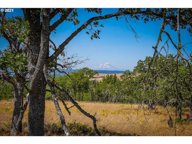 Centerville Hwy, Lyle, WA 98635 (MLS #21035264) :: Beach Loop Realty