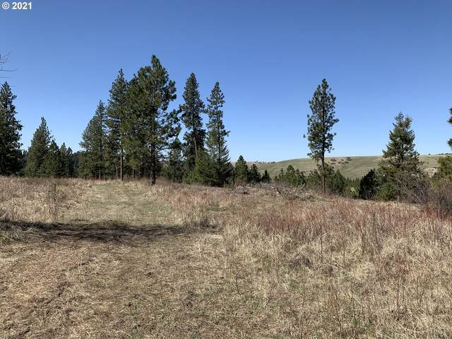 0 Wild Horse Rd, Weston, OR 97886 (MLS #21038819) :: Tim Shannon Realty, Inc.