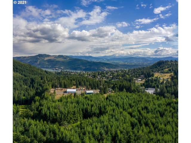 Indian Hill Rd, White Salmon, WA 98672 (MLS #21040482) :: The Pacific Group
