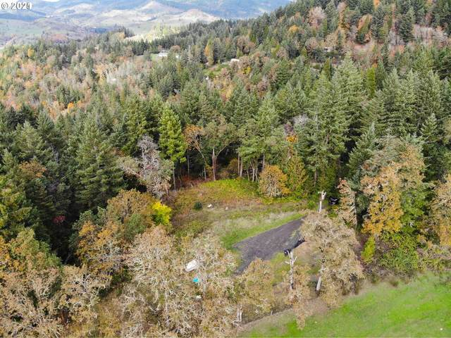Bar L Ranch Rd, Glide, OR 97443 (MLS #21051817) :: Song Real Estate