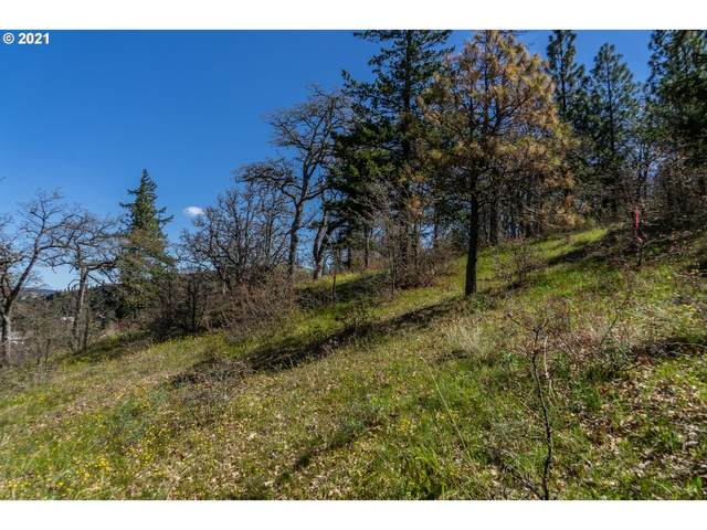 5TH Ave #27, Mosier, OR 97040 (MLS #21059579) :: The Haas Real Estate Team