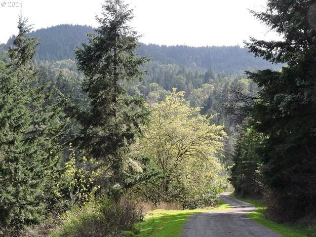 0 Boomer Hill Rd #105, Myrtle Creek, OR 97457 (MLS #21063587) :: Premiere Property Group LLC