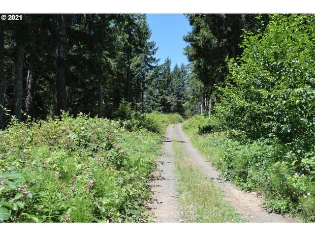 Bennett Creek Rd, Cottage Grove, OR 97424 (MLS #21079796) :: Holdhusen Real Estate Group