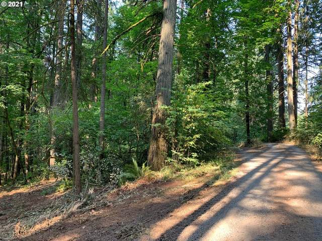 NW Grist Mill Dr, North Plains, OR 97133 (MLS #21080810) :: Fox Real Estate Group