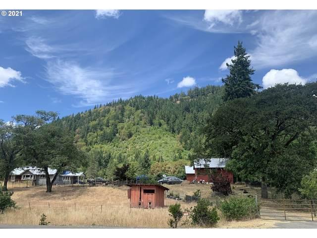 20190 Tiller Trail Hwy, Days Creek, OR 97429 (MLS #21082404) :: Holdhusen Real Estate Group