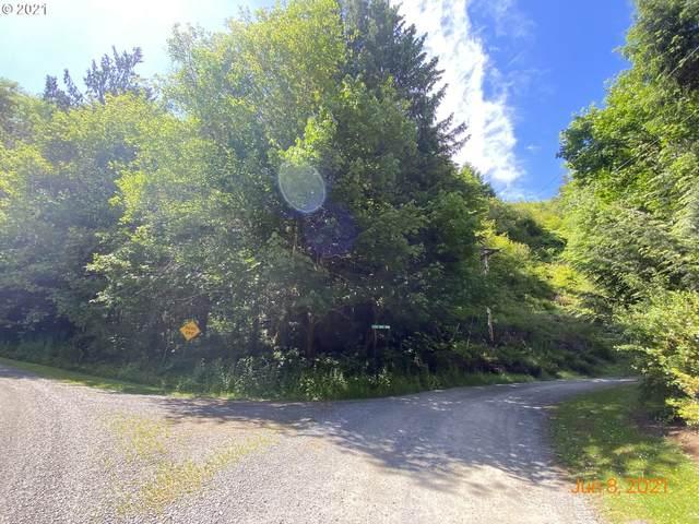 Vl West Point D, Nehalem, OR 97131 (MLS #21093872) :: McKillion Real Estate Group