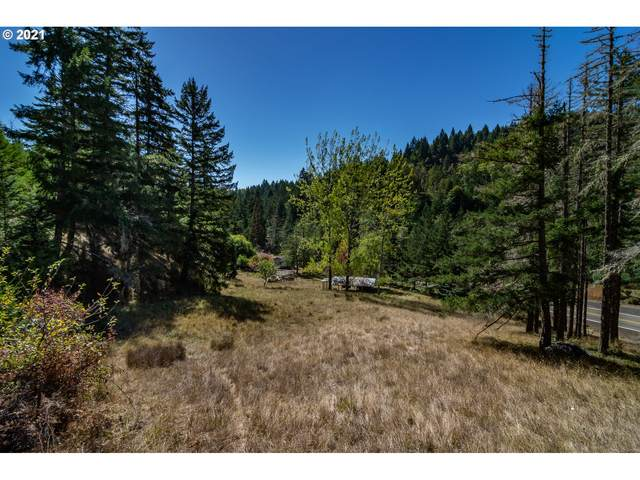 5244 Cole Rd, Oakland, OR 97462 (MLS #21096227) :: Townsend Jarvis Group Real Estate