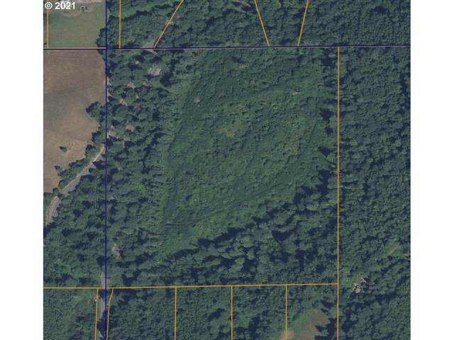 1302 Salmon Falls Rd, Washougal, WA 98671 (MLS #21109619) :: Song Real Estate