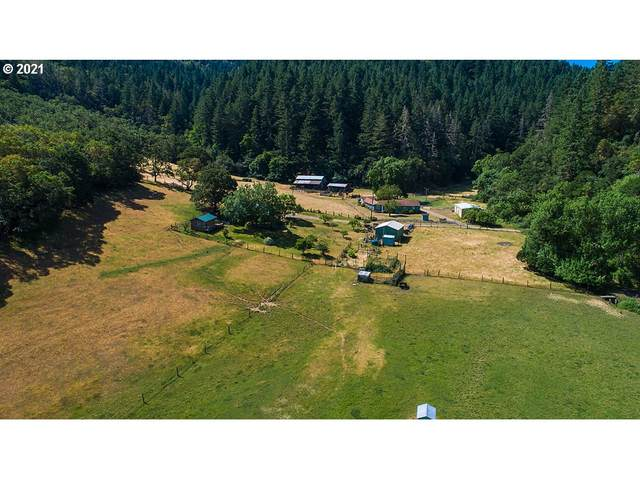 1007 Norton Ln, Myrtle Creek, OR 97457 (MLS #21112964) :: Townsend Jarvis Group Real Estate