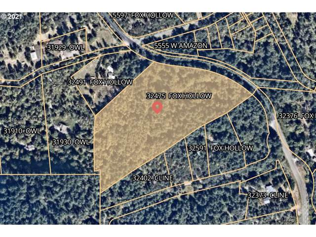 32475 Fox Hollow Rd, Eugene, OR 97405 (MLS #21127097) :: Lux Properties