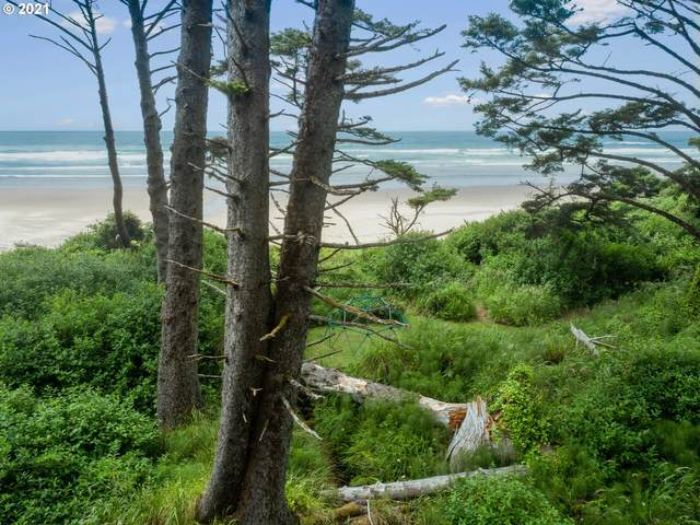 0 Hwy 101 Adj To 80704, Arch Cape, OR 97102 (MLS #21127271) :: Premiere Property Group LLC