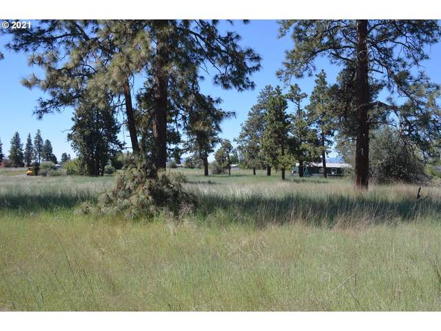 Meadow View Dr, Chiloquin, OR 97624 (MLS #21131020) :: Lux Properties