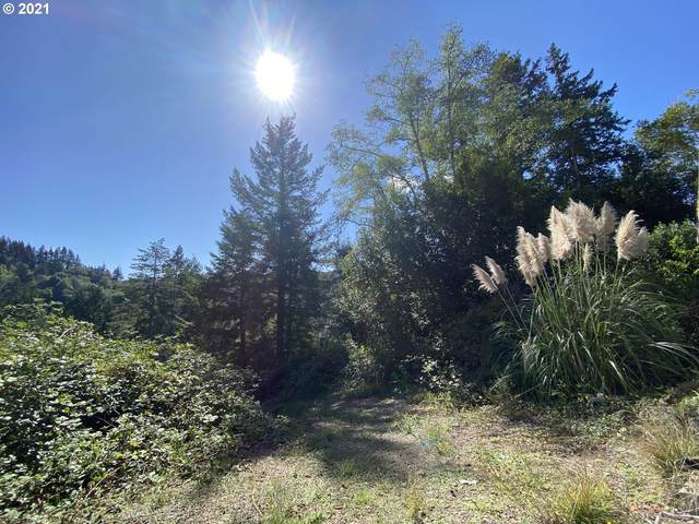 17155 Mountain Dr, Brookings, OR 97415 (MLS #21131853) :: Premiere Property Group LLC