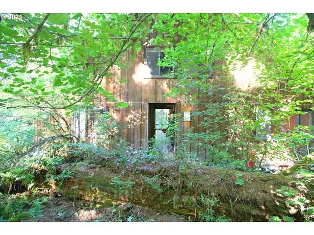 71461 Fishhawk Rd, Birkenfeld, OR 97016 (MLS #21132838) :: Premiere Property Group LLC
