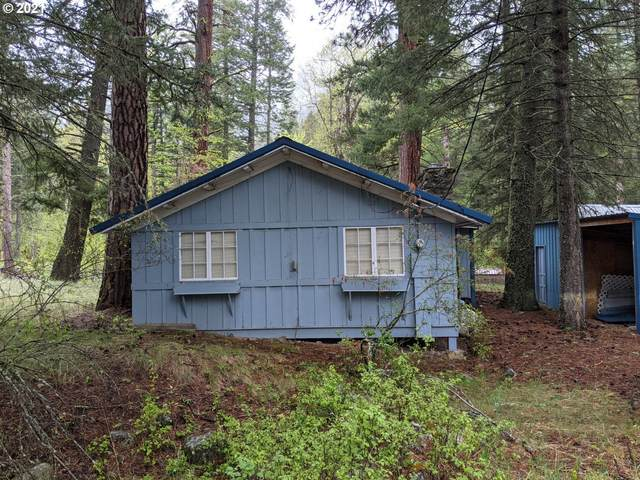 84628 Pine Ridge Ln, Wallowa Lake, OR 97846 (MLS #21156231) :: RE/MAX Integrity