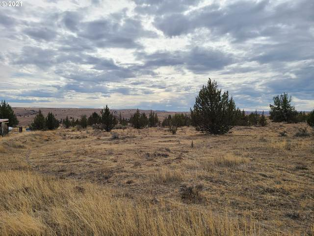 George Jackson Rd, Maupin, OR 97037 (MLS #21158921) :: Song Real Estate