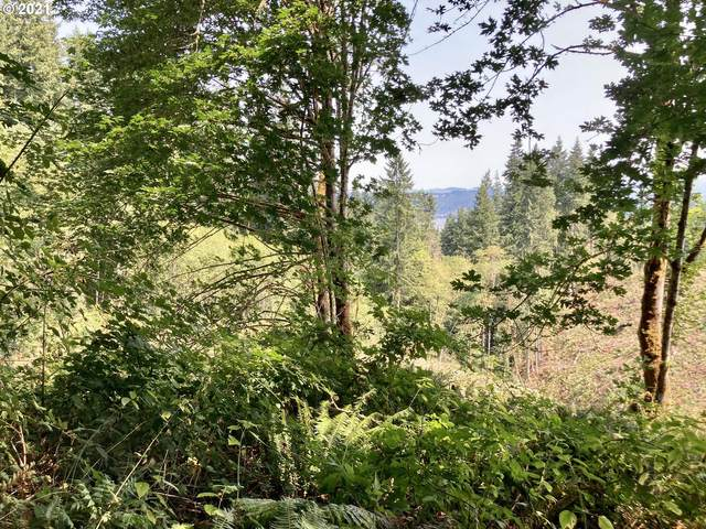 Fern Hill Rd, Rainier, OR 97048 (MLS #21160926) :: Next Home Realty Connection