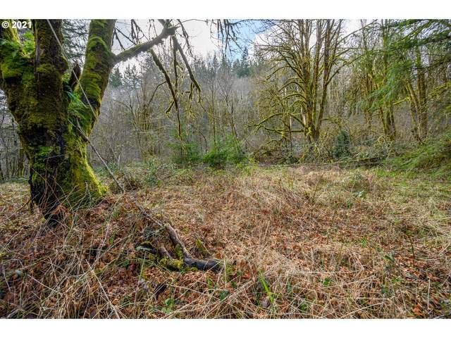 41205 SW Pumpkinseed Rd, Willamina, OR 97396 (MLS #21163651) :: Townsend Jarvis Group Real Estate
