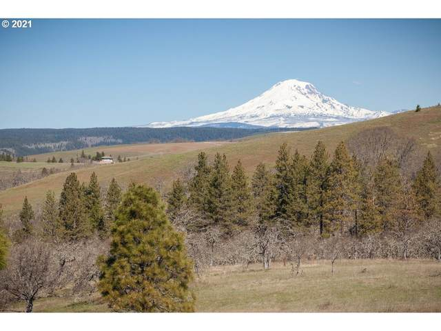 South Prairie Road, Lyle, WA 98635 (MLS #21170094) :: Premiere Property Group LLC