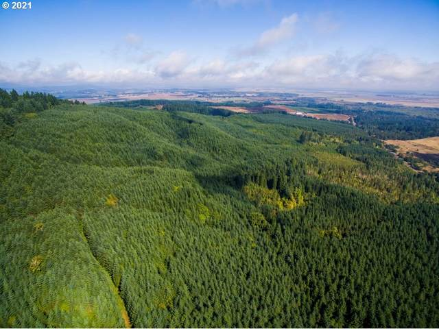 0 Bellfountain Rd, Monroe, OR 97456 (MLS #21171083) :: Townsend Jarvis Group Real Estate