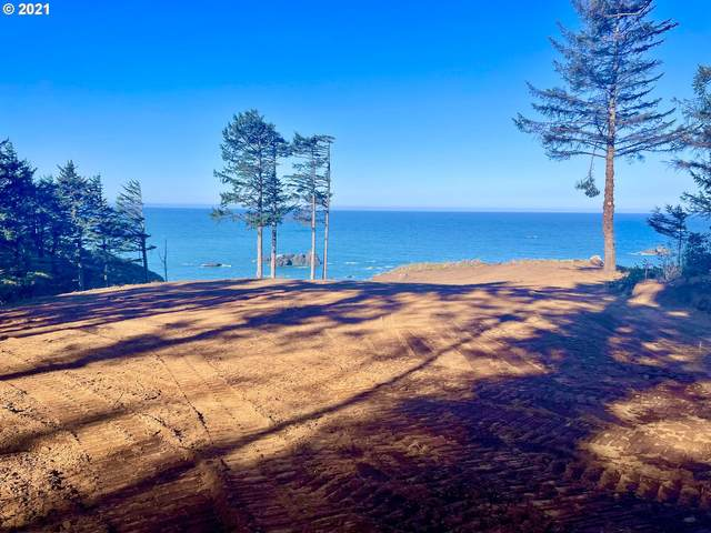 Agate Way #800, Gold Beach, OR 97444 (MLS #21173472) :: Premiere Property Group LLC