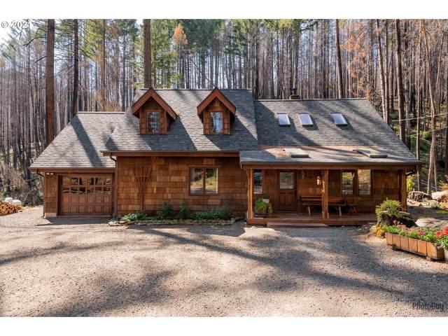 91212 Elk Creek Rd, Vida, OR 97488 (MLS #21174710) :: The Haas Real Estate Team