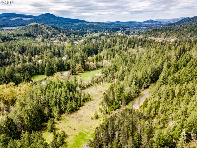 R.R. Anderson Rd, Dexter, OR 97431 (MLS #21175373) :: Fox Real Estate Group