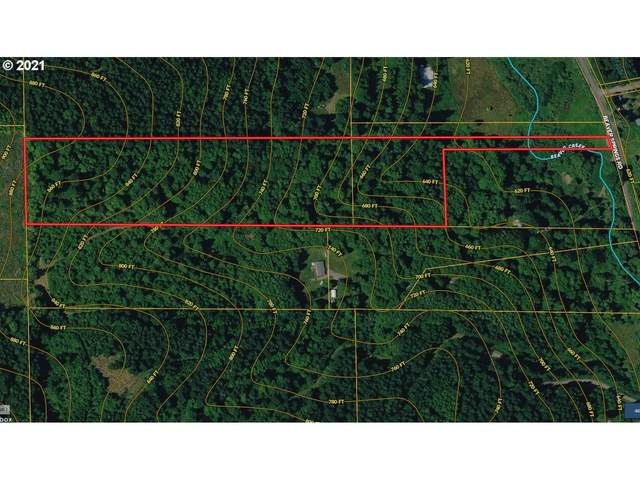 1 Beaver Springs, Rainier, OR 97048 (MLS #21182927) :: Next Home Realty Connection