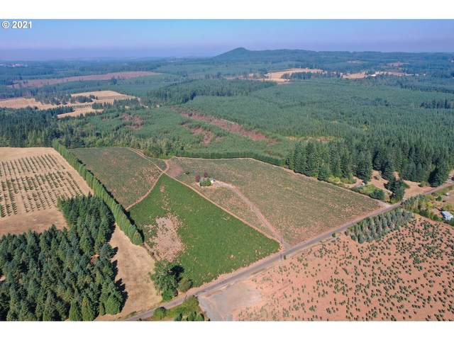 27171 S Sheckly Rd, Colton, OR 97017 (MLS #21185270) :: Song Real Estate