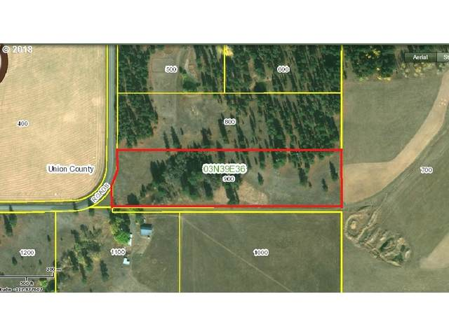 Palmer Junction, Elgin, OR 97827 (MLS #21188584) :: Windermere Crest Realty