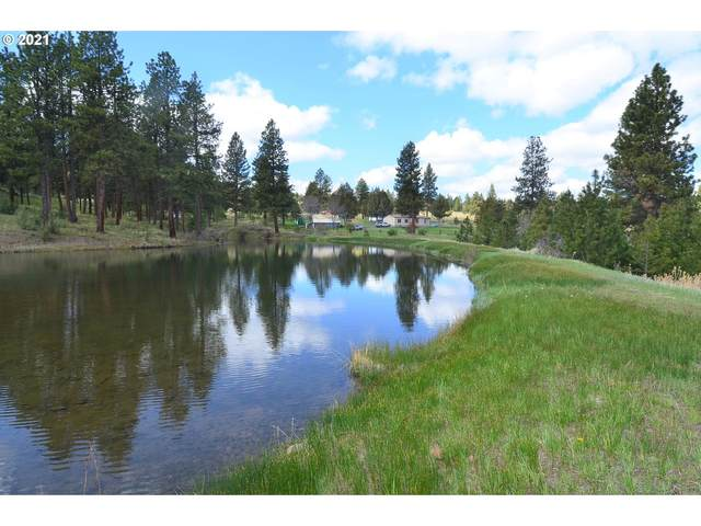 55210 Paul Creek Ln, Long Creek, OR 97856 (MLS #21195795) :: The Pacific Group
