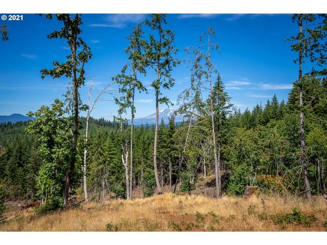 Sanborn, White Salmon, WA 98672 (MLS #21200257) :: Change Realty